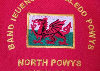 North Powys Youth Vand