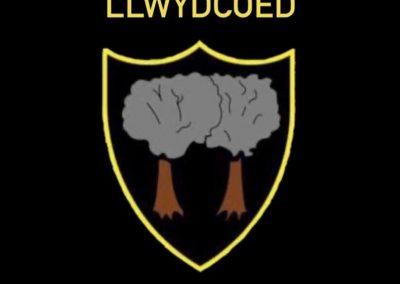 Llwydcoed Band
